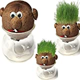 Tutoy Mini-Diy-Magische Pflanze Topf Grass Graskopf Puppe Indoor Topfpflanze