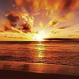 Artland Qualitätsbilder I Glasbilder Deko Glas Bilder 30 x 30 cm Landschaften Gewässer Meer Foto Orange D8PH Schöner tropischer Sonnenuntergang am Strand