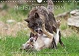 Meister Isegrim (Wandkalender 2020 DIN A4 quer): Zauberhafte Bilder aus dem Leben des Wolfes. Ein Kalender von Ingo Gerlach GDT. (Monatskalender, 14 Seiten ) (CALVENDO Tiere)