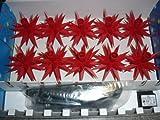 Sternkette A1s rot (Parallelschaltung+Trafo) für Innen-und Außenbereich