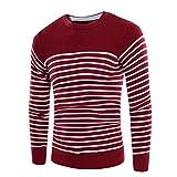 Herren Slim Fit Mode Knitting Pullover Sweaters(SW01Wein rot,3XL)