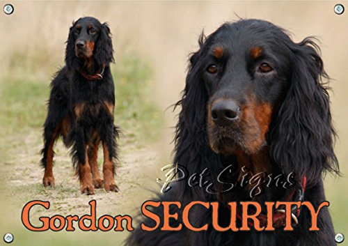 dog-sign-gordon-setter-gordon-security-din-a4