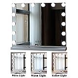 WAOBE Desktop-Große LED Spiegel, Quadratische Tischplatte Standspiegel, Professionelle HD Beauty Schminkspiegel mit Birne, Haushalt Foto Studio Spiegel Legierung Rahmenhalterung,24Inx20in