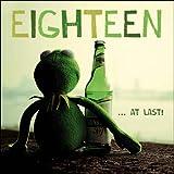 Grußkarte (wdm1782) 18. Geburtstag–Kermit der Frosch mit A Beer–Treuen Sidekick