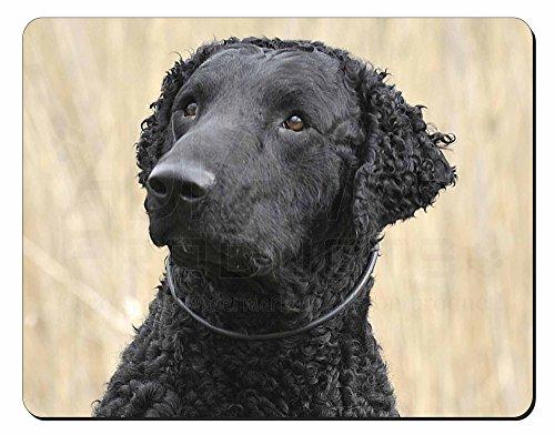 Curly Coat Retriever Hund Computer-Maus -Matte / pad Weihnachtsgeschenk (Retriever Coat Curly)