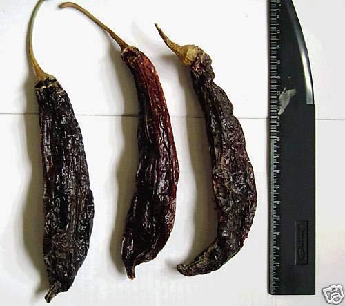 Portal Cool 50 Samen Aji Panca Hot Pepper Capsicum Chinense