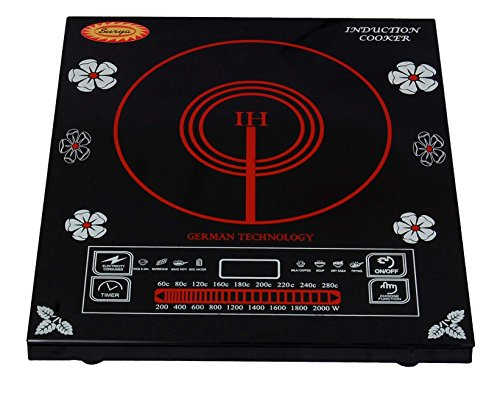 Surya Induction Cooker DZ18-IIP