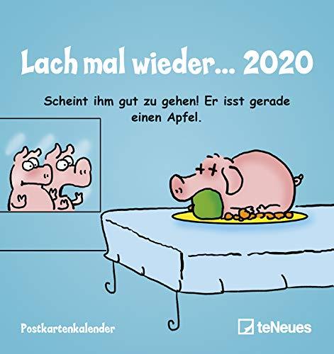 Lach mal wieder 2020 - Postkartenkalender - Sprüchekalender - Wandkalender - Tischkalender - 16x17cm - Humorkalender - Geschenkkalender