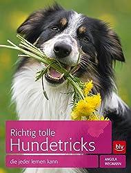 Richtig tolle Hundetricks: die jeder lernen kann