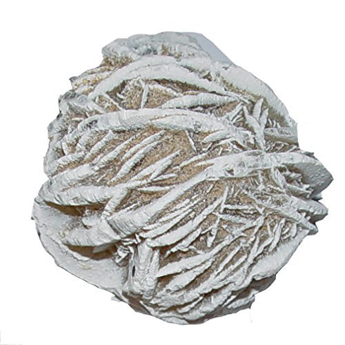 Preisvergleich Produktbild Sandrose Wüstenrose aus Mexiko Größe M: ca. 40 - 50 mm als Deko - oder als Duftöl Speicher (4862)