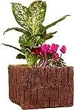 matrasa Baumstamm Blumentopf Quadratisch - Pflanztopf Blumenkasten Holzoptik