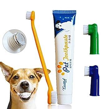 Dentifrice pour chien, brosse à dents, brosses à doigts, dentifrice pour chiens et chats, plaque et tartare Kit de soins dentaires pour animaux de compagnie - saveur de boeuf