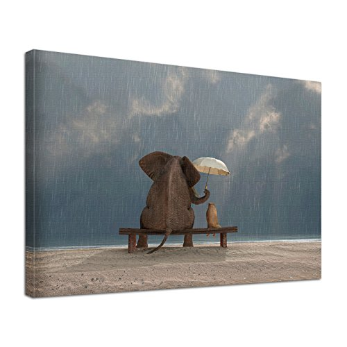 Leinwandbild Bild Tiere Elefant Hund Freundschaft im Regen (100 x 80 cm)