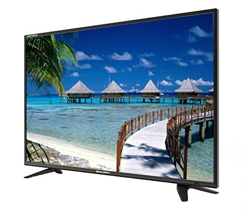 Salora 61 cm (24 inches) SLV-2403 HD Ready LED TV (Black)
