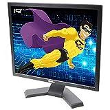 Dell Flachbildschirm PC Pro 19 Zoll E190Sb 0G448N G448N TFT VGA 1280 x 1024 4:3 VESA schwarz