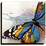 Cuadro lienzo multicolor mariposa pintura al óleo Pintado a mano decoración mono arte contemporáneo (50 x 50 cm)