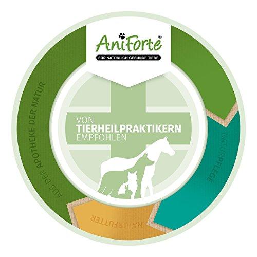 AniForte Wurm-Formel 100 Kapseln- Naturprodukt für Hunde -