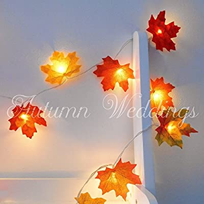 2m 20 LED Mixed Autumn Leaves Fairy Lights - Other Sizes Available - String Lights / Lit Garland - AA Battery Powered - Wedding Decorations - Fairy Lights Bedroom - Fairy Lights Warm White - Leaf Fairy Lights