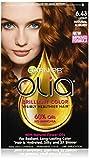 Garnier Olia Oil Powered Permanent Hairc...