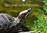 Das Leben der Schildkröten (Wandkalender 2017 DIN A4 quer): Einzigartige Reptilien: Land- und Wasserschildkröten (Monatskalender, 14 Seiten ) (CALVENDO Tiere)