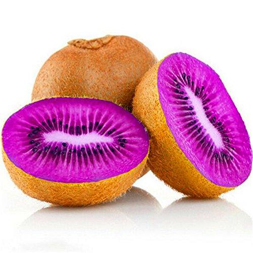 Thailand Kiwi-Baum-Samen Mini Fruit Bonsaipflanzen für Haus und Garten 100pcs Kiwi A2