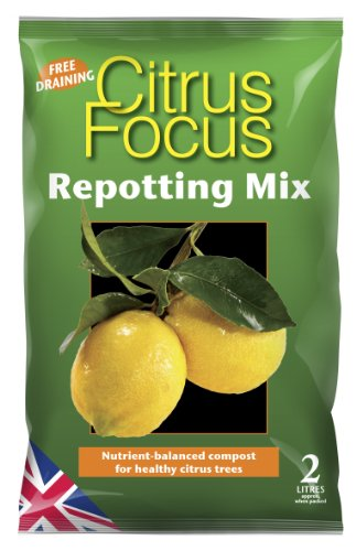 citrus-focus-repotting-mix-2-litre