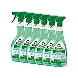 6x Frosch Spiritus Glas-Reiniger Sprühflasche 500 ml