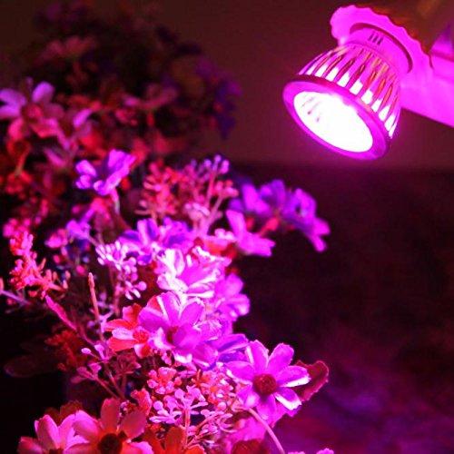 DIKHBJWQ E27 10W Light Wachsen Helle Veg-Blumen-Nachtlicht Innenbetriebs-Hydroponik-Volle Nachttischlampe Spektrum-Lampe Tischlampe Solar Lichterkette