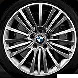 Original BMW Alufelge 5er F10-F10 LCI W-Speiche 423 in 19 Zoll für vorne