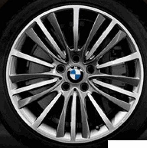 Original BMW Alufelge 5er F10-F10 LCI W-Speiche 423 in 19 Zoll für hinten