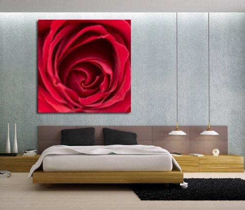 Close-up di bocciolo di rosa, motivo floreale stampa su tela. Rosa rossa Foto su tela 76,2x 76,2cm