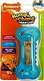 Nylabone Romp 'n Chomp Fill 'n Freeze Treat Toy