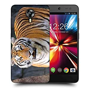 Snoogg Tiger Roar Printed Protective Phone Back Case Cover For Micromax Canvas Nitro 4G