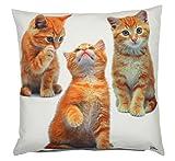 Dekokissen Zierkissen Polster Kissen mit Füllung 3 Katzen Weihanchtsgeschenk Geschenk für Weihnachten Katzenkissen Kuschelkissen
