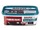 BAUFIX Trend-Color 2,5 l Für Neu- und Renovierungsanstriche (Aubergine)