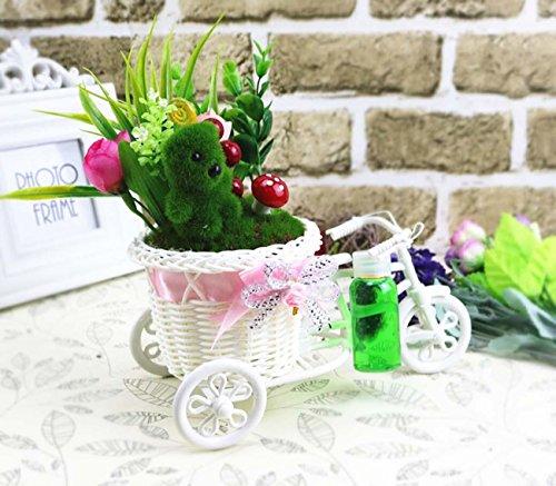 Dreirad-Simulation Pflanze mit Parfüm Home Decoration Ornamente Hochzeit Party Wohnzimmer Schlafzimmer Pendel Geschenk Cartoon Fahrrad Geschenk , large, long, 22* wide, 22* tall, 12cm