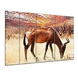 Keilrahmenbild - Afrikanische Antilope - 180x120 cm 4tlg - Bilder als Leinwanddruck - Wandbild von Bilderdepot24 - Tierwelten - Afrika - grasende Antilope vor einem imposanten Sonnenuntergang