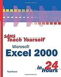 Sams teach yourself microsoft excel 2000