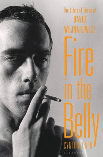 Fire in the Belly: The Life and Times of David Wojnarowicz (English Edition)