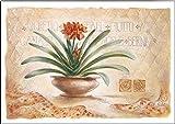 Keilrahmen-Bild - Claudia Ancilotti: Giotto Leinwandbild Stillleben floral modern beige (55x80)