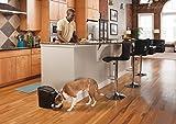 PetSafe Futterautomat, automatischer programmierbarer Futternapf mit Timer, Fressnapf, für Hunde und Katzen, 12 portionierbare Mahlzeiten, batteriebetrieben, digital, rutschfest - 8