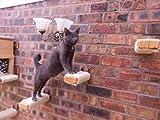 Sisal Cat Steps