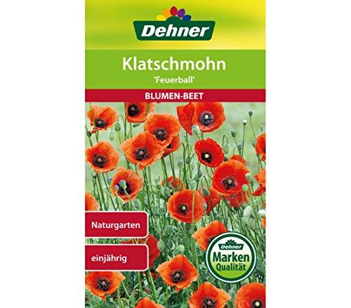 "Dehner Blumen-Saatgut, Klatschmohn, ""Feuerball"", 5er Pack (5 x 2.5 g)"