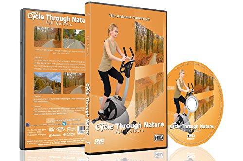 en-velo-au-coeur-de-la-nature-couleurs-dautomne-pour-exercices-dinterieur-velo-dappartement-tapis-ro