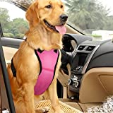 Best Four Paws Dog Harness For Cars - EAST-BIRD Dog Safety Vest Harness with Safety Belt Review