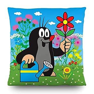 AG Design kleine Maulwurf Deko Kissen, Polyester, Mehrfarbig, 40 x 40 cm