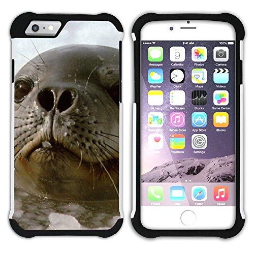 Graphic4You Seehund Tier Weiß Hart + Weiche Kratzfeste Hülle Case Schale Tasche Schutzhülle für Apple iPhone 6 / 6S Design #14