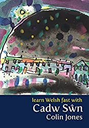 Learn Welsh Fast With Cadw Swn (Book and DVD)