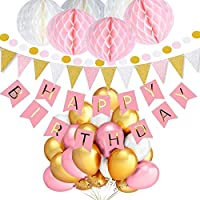 TopDeko Birthday Decorations for Girls and Boys, Happy Birthday Bunting Banner with 6PCS Honeycomb Balls, 30Pcs Dot Garland, 9.8Feet Triangle Flags Banner, 30pcs Pearl Balloons - Pink and Blue (Pink)