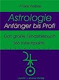 Das grosse Synastriebuch: 366 Interaspekte (Astrologie Anfänger - Profi)